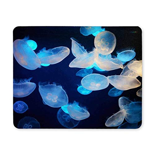 Drempad Gaming Mauspads Custom, (Jellyfish Mosue pad) Gaming Mouse pad,Mouse Pad Jellyfish Non Slip Rubber Computer Mousepad von Drempad
