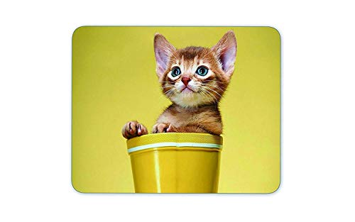 Drempad Gaming Mauspads Custom, Bucket Sprout pet Rectangular Mouse pad von Drempad