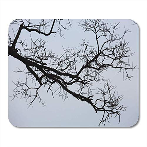 "HOTNING Gaming Mauspads, Gaming Mouse Pad Bare Wintery Twigs Branches No Leaves Black Branch Environment 11.8""x 9.8"" Decor Office Nonslip Rubber Backing Mousepad Mouse Mat von HOTNING"