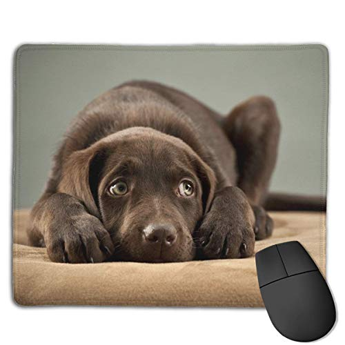 Black Dog Locking Mouse Pad Anti-Slip Soft Gaming Rubber Mousepads von Nizefuture