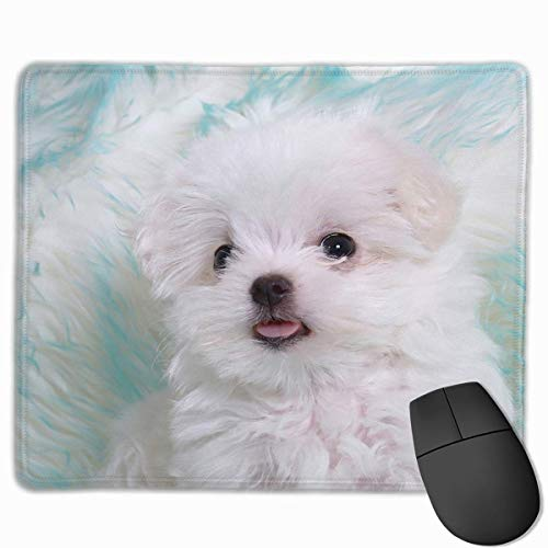 Mouse Pad Cute Lifelike Dog Painting Rectangle Rubber Mousepad 11.81 X 9.84 Inch Gaming Mouse Pad with Black Lock Edge von Nizefuture