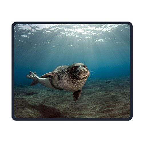 Seal Gaming Mouse Pad Custom Design Non-Slip Rubber Mouse Mat for Desk,Laptop von Nizefuture