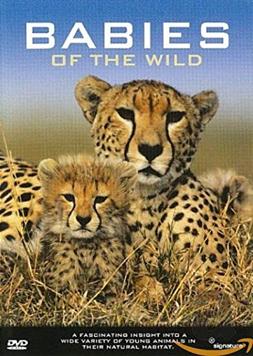 Babies of the Wild von VARIOUS